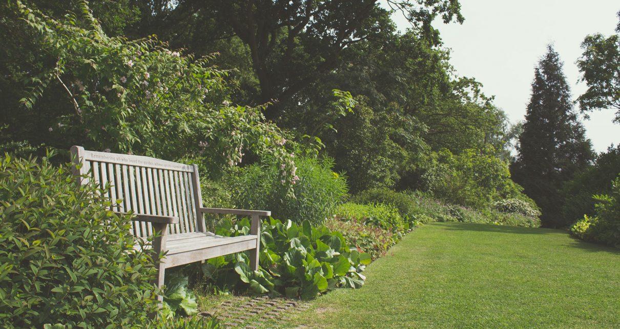Hoe maak je je tuin helemaal klaar voor de zomer